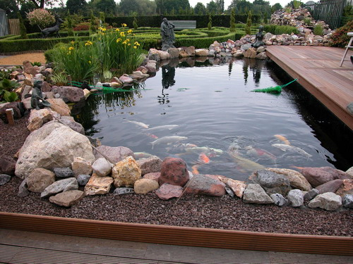 Как построить пруд с рыбой своими руками