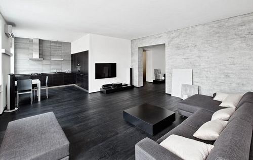 черно белая гостиная фото интерьера тона и дизайн с яркими